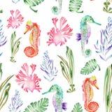 Wzór z akwareli seahorses i gałęzatką (algi) Obrazy Royalty Free