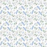 wzór z błękitnymi piórkami Zdjęcia Royalty Free