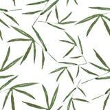 Wzór z bambusów liśćmi dla najlepszy druku royalty ilustracja