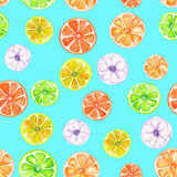 Wzór z barwionej akwareli candied owoc Zdjęcia Royalty Free