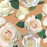 Wzór z białymi różami Obraz Royalty Free