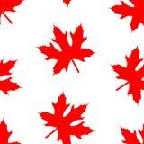 Wzór z czerwonym liściem klonowym ilustracji