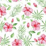 Wzór z czerwonymi poślubników kwiatami Obraz Royalty Free