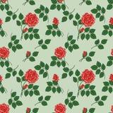 Wzór z czerwonymi różami Obraz Royalty Free