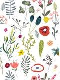 Wzór z doodle kwiatami Zdjęcie Royalty Free