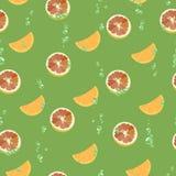 Wzór z grapefruitowymi plasterkami, pomarańcze z lotniczymi bąblami również zwrócić corel ilustracji wektora royalty ilustracja
