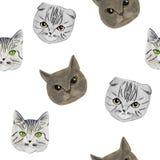 Wzór z kaganami trzy kota rysującego ręką, markiery fotografia royalty free