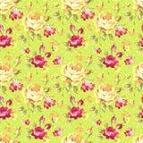 Wzór z koloru żółtego i menchii różami Zdjęcie Royalty Free