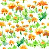 Wzór z kwiatami Obraz Royalty Free