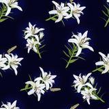 Wzór z kwiatami biała leluja na błękitnym tle wektor ilustracji