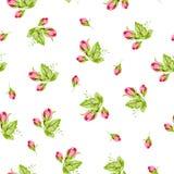 Wzór z małymi pączek różami Zdjęcia Stock