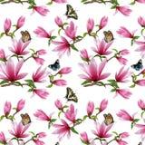 Wzór z magnolią i motylami w ilustracji royalty ilustracja