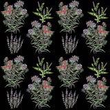 Wzór z mennicą i innymi wildflowers fotografia royalty free
