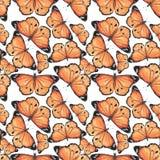 Wzór z motylami Obrazy Royalty Free