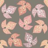Wzór z ornamentacyjną rośliną Zdjęcie Royalty Free