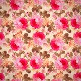 Wzór z pastelowych menchii różami Zdjęcie Stock