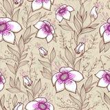 Wzór z różowymi kwiatami Zdjęcia Royalty Free
