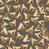 Wzór z tradycyjnego purim trójgraniastym ciastem faszerował z figami obraz stock