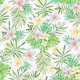 Wzór z tropikalnymi kwiatami i zielonymi palmowymi liśćmi Fotografia Stock