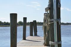wzdłuż brzegu Zdjęcie Royalty Free