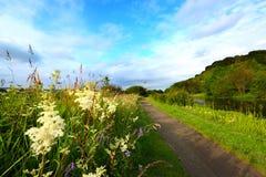 wzdłuż kanałowej ścieżki wiejskiego lato Obrazy Stock