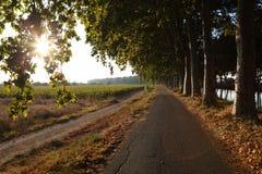 wzdłuż kanału du France Midi drogi Zdjęcia Royalty Free
