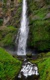 wzdłuż klifu objęta upadku moss gnania wody Zdjęcie Stock
