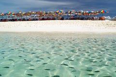 wzdłuż plażowych ryba Obrazy Royalty Free