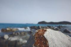 Wzdłuż plaży Zdjęcie Stock