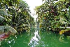 Wzdłuż zielonego kanału Fotografia Royalty Free