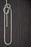 węzeł Zdjęcie Royalty Free