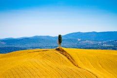 Wzgórza blisko Asciano w Crete Senesi, Tuscany, Włochy zdjęcie royalty free