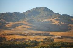 Wzgórza bydła gospodarstwo rolne, San Simeon, Kalifornia obrazy royalty free