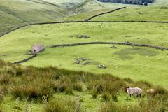 Wzgórza Darnbrook blisko Littondale, Yorkshire doliny Obrazy Stock