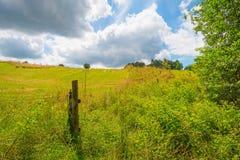 Wzgórza Eifel park narodowy w świetle słonecznym Zdjęcia Royalty Free
