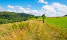 Wzgórza Eifel park narodowy w świetle słonecznym Zdjęcie Stock