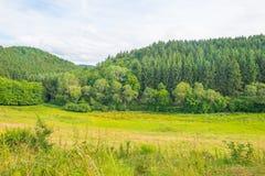 Wzgórza Eifel park narodowy w świetle słonecznym Obrazy Royalty Free