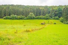 Wzgórza Eifel park narodowy w świetle słonecznym Obraz Stock