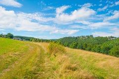 Wzgórza Eifel park narodowy w świetle słonecznym Fotografia Royalty Free