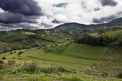 Wzgórza i łąki obraz royalty free