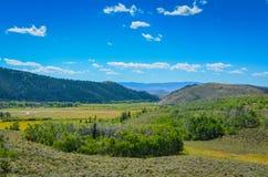 Wzgórza i doliny Wyoming - medycyna łęku las państwowy - Zdjęcie Stock