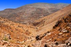 wzgórza judean zdjęcie royalty free