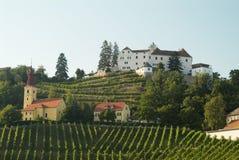 wzgórza kapfenstein winograd Fotografia Royalty Free
