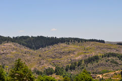 Wzgórza Kształtują teren w willa generale Belgrano, cordoba fotografia stock
