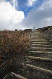 wzgórza osamotniony osoby wierzchołek Fotografia Stock