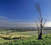wzgórza pegston zdjęcia stock