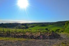 wzgórza słoneczne obraz royalty free