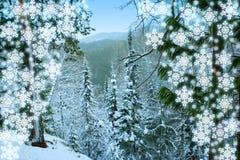 wzgórza Siberia śnieżna krajobrazowa zimy drzew Zdjęcia Stock