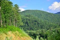Wzgórza, skłony i góry, - lato naturalny krajobraz zdjęcia royalty free