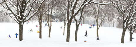 wzgórza sledding Fotografia Royalty Free